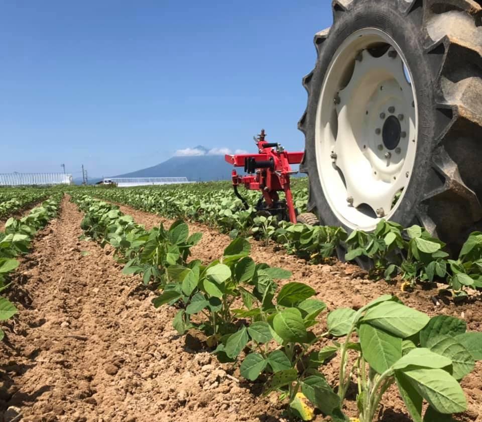 県内トップクラスの品質の大豆
